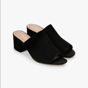 NWOT Perfect black mules